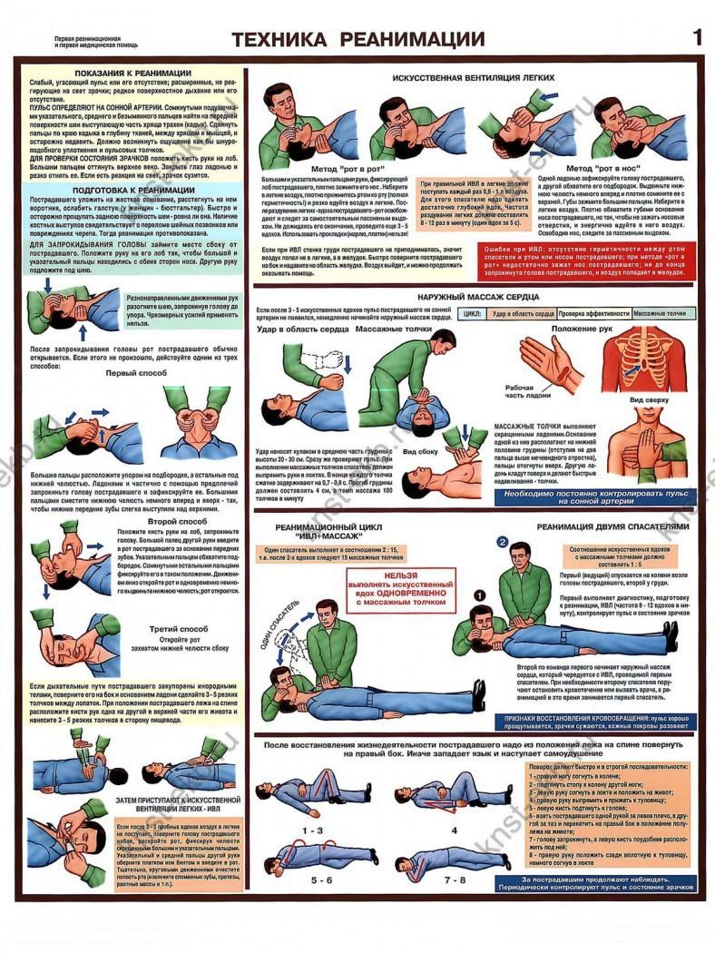 Плакат Экстренная реанимация и первая медицинская помощь ЭДС-1