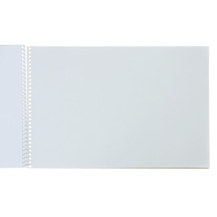 Альбом для рисования А4, 40 листов на гребне «Нежный букет», обложка мелованный картон