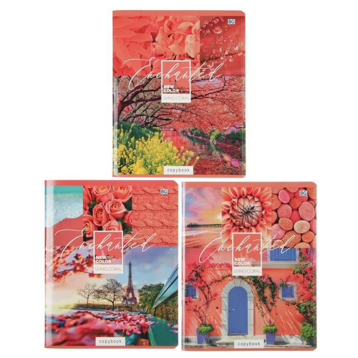 Тетрадь 96 листов клетка New Color, обложка мелованный картон, выборочный лак