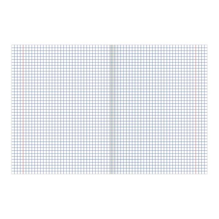 Тетрадь 48 листов в клетку, BRAUBERG «Российская символика», обложка тиснение фольгой, микс
