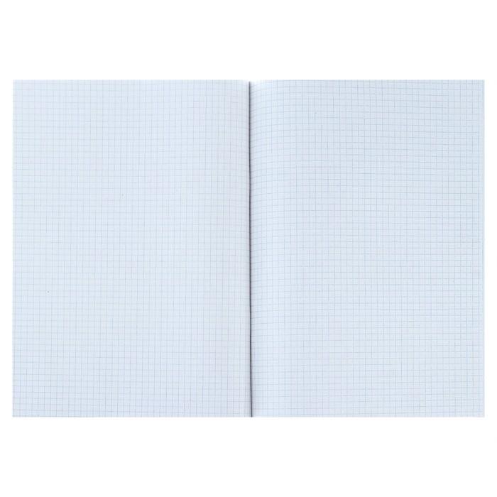 Тетрадь А4, 96 листов клетка Calligrata, «НЛО», белизна 95%, картонная обложка