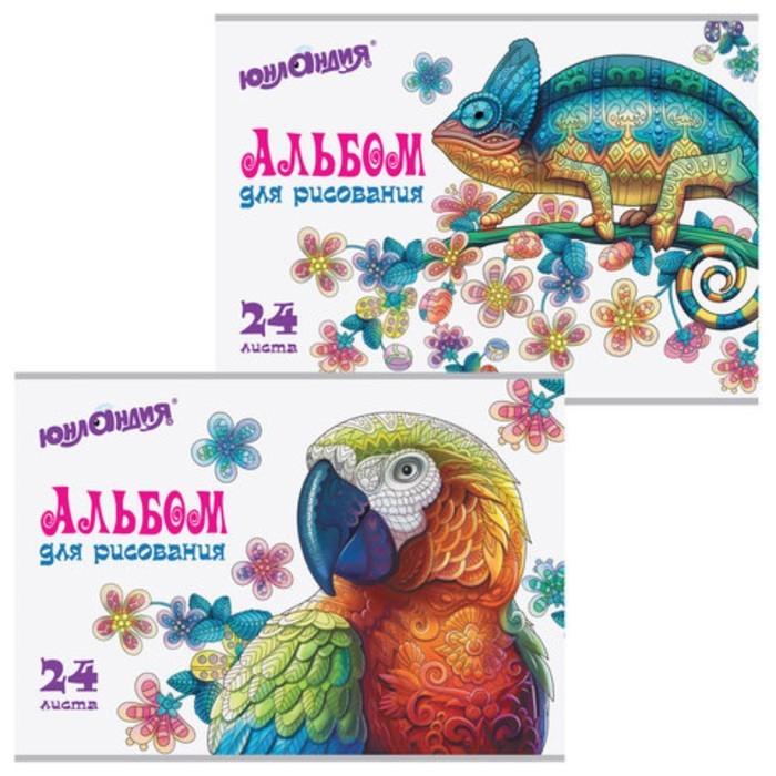 Альбом для рисования, А4, 24 л, скоба, обл картон, с раскраской, ЮНЛАНДИЯ, Экзотика