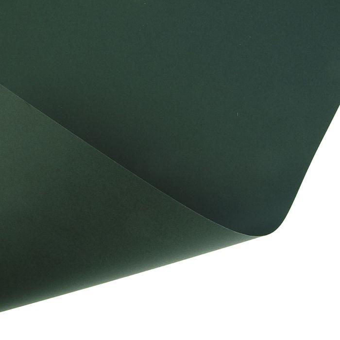 Картон цветной, 650 х 500 мм, Sadipal Sirio, 170 г/м2, зелёный тёмный