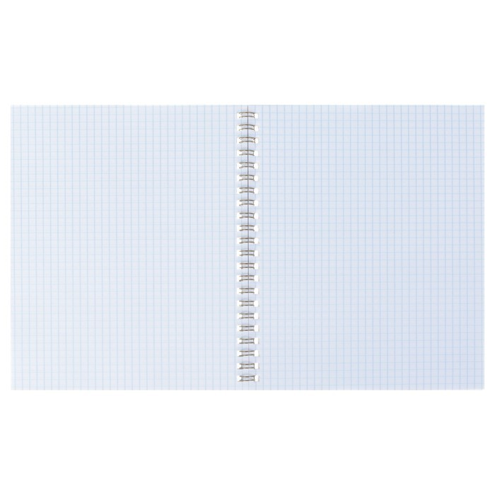 Тетрадь А5+, 80 листов клетка на гребне