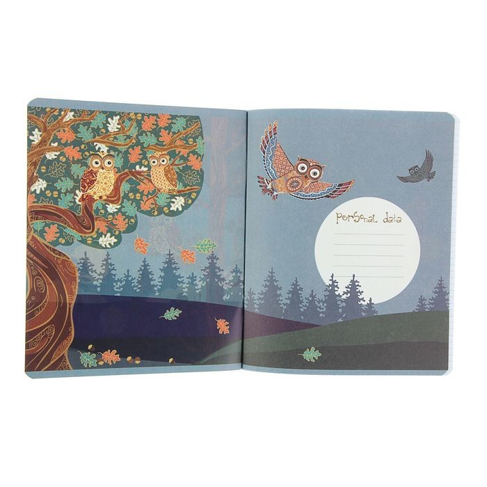 Тетрадь 48 листов клетка «Совы. Сказочный лес», картонная обложка, гибридный лак, тиснение фольгой, 5 видов МИКС