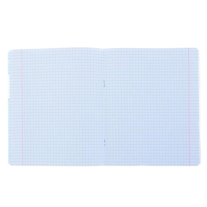Тетрадь 48 листов клетка «Бельки», обложка мелованный картон, фольгирование, УФ-лак, конгрев, МИКС