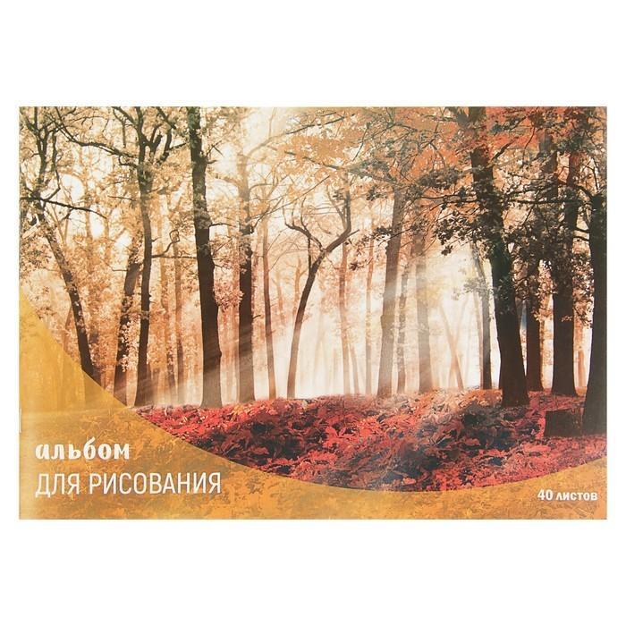 Альбом для рисования А4, 40 листов на скрепке Calligrata «Лес осенью», обложка мелованный картон, блок 100 г/м?