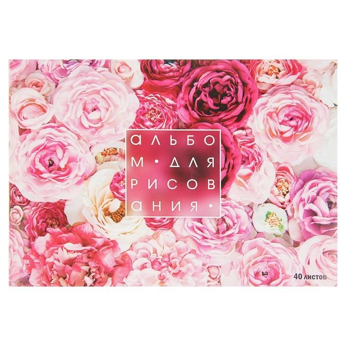Альбом для рисования А4, 40 листов на скрепке Calligrata «Розы», обложка мелованный картон, блок 100 г/м?