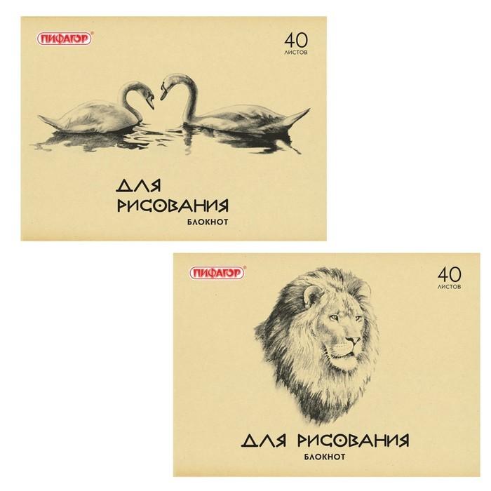Блокнот для рисования А4, 40 листов, обложка офсет, STAFF, 2 вида, 203 х 280 мм, МИКС