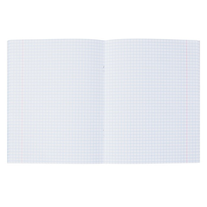 Тетрадь 96 листов клетка «Серебро. METALLIC», бумвинил