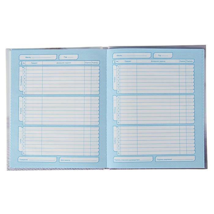 Дневник для 5-11 класса