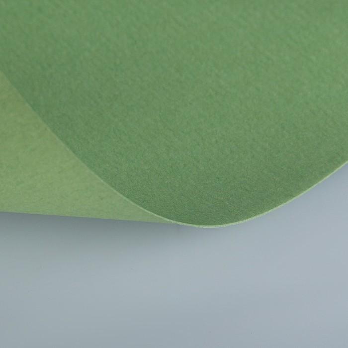 Бумага для пастели 297 х 420 мм, Lana Colours, 1 лист, 160 г/м?, зелёный сок