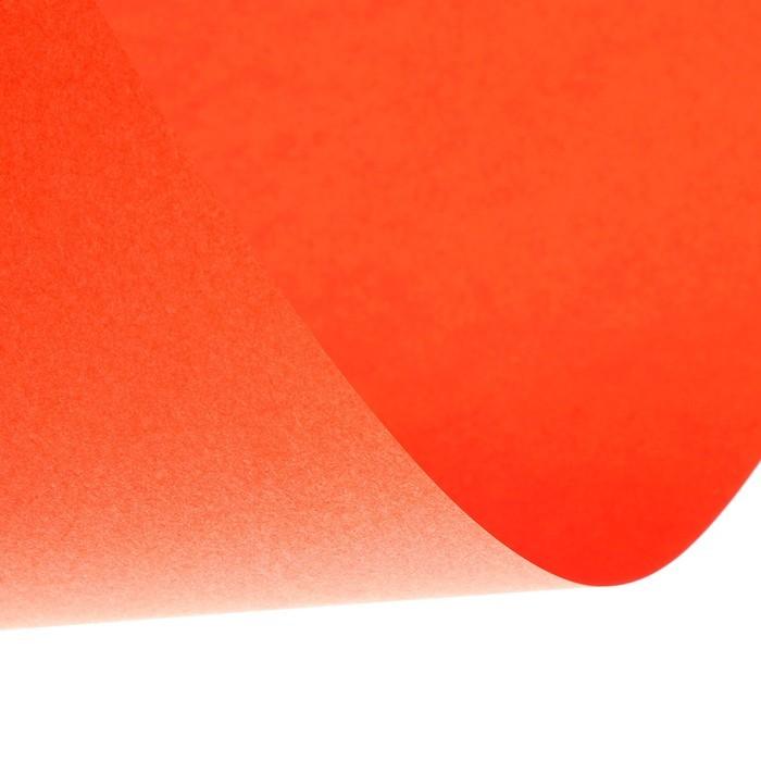 Бумага цветная А4, 24 листа, 12 цветов «Для офисной техники», 80 г/м?