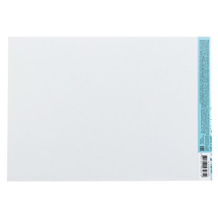 Альбом для рисования А4, 20 листов, на клею, Erich Krause «Птицы жарких стран», блок 120 г/м2, обложка мелованный картон 170 г/м2, жёсткая подложка 360 г/м2, белизна 100%