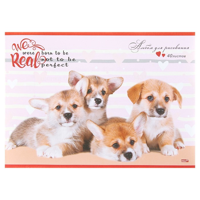Альбом для рисования А4, 40 листов «Дружные щенки», бумажная обложка