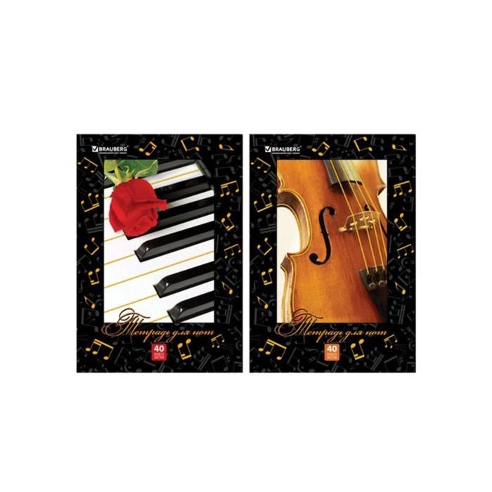 Тетрадь для нот А4, 40 листов, вертикальная BRAUBERG, микс