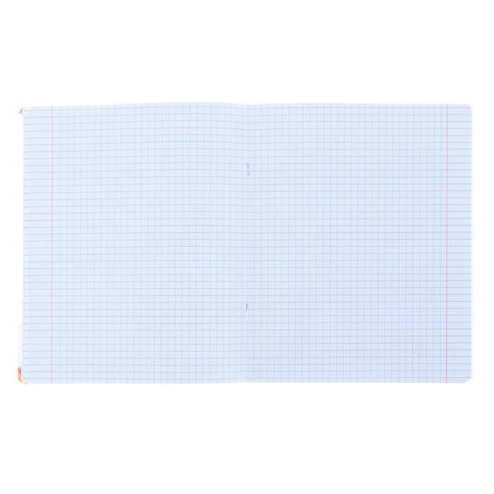Тетрадь 48 листов клетка «Чудесное настроение 2», обложка мелованный картон, УФ-лак, конгрев, МИКС