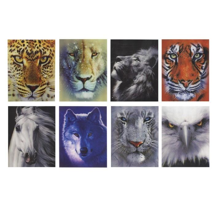Блокнот А7, 40 листов на клею «Дикие животные», пластиковая обложка 3D