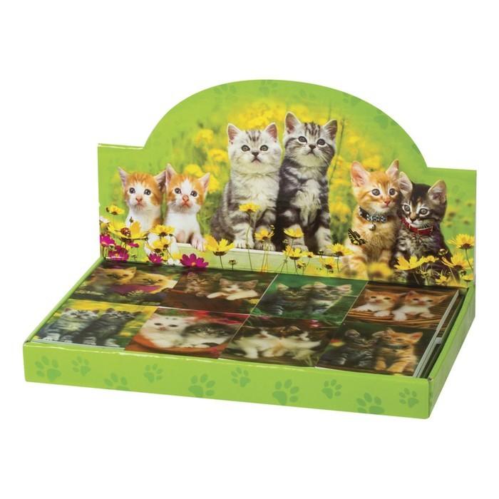Блокнот А7, 40 листов на клею «Котята», пластиковая обложка 3D