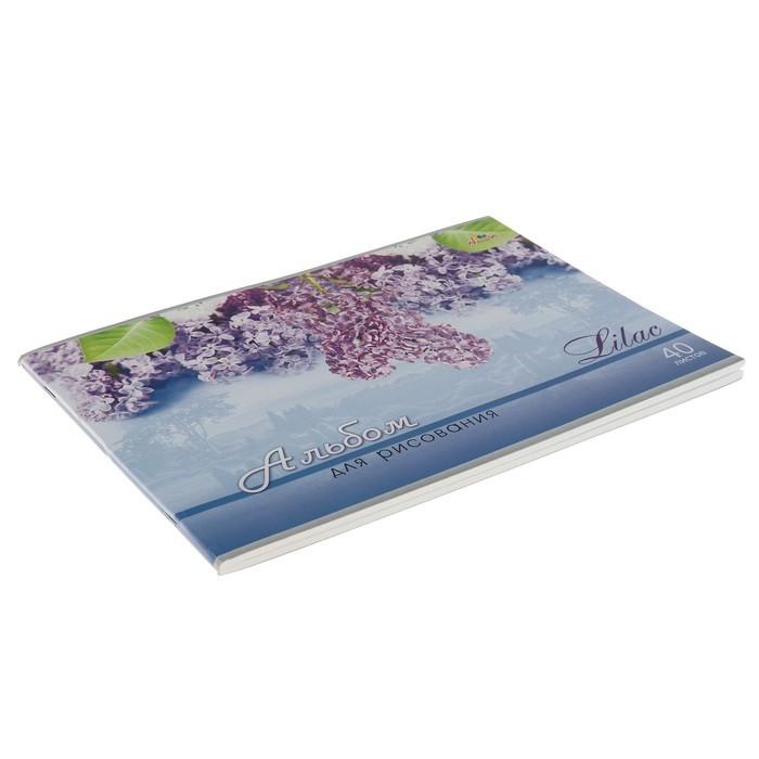 Альбом для рисования A4, 40 листов на скрепке «Сирень», обложка мелованный картон, выборочный лак, блок 100 г/м?