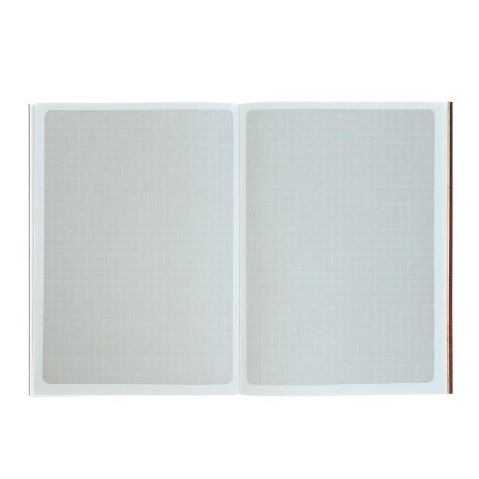 Тетрадь 48 листов «Гравити Фолз», УФ-лак, накидки