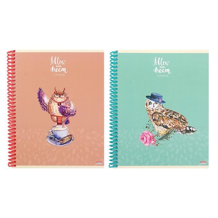 Тетрадь 96 листов клетка на гребне «Мечтательные совы», обложка мелованный картон, МИКС