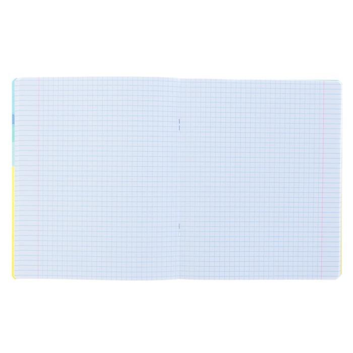 Тетрадь 48 листов клетка «Хипповые каникулы», обложка мелованный картон, матовая ламинация, ламинация Soft Touch, МИКС