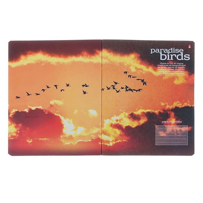 Тетрадь 48 листов клетка «Райские птицы», обложка мелованный картон, металлизация, конгрев, МИКС