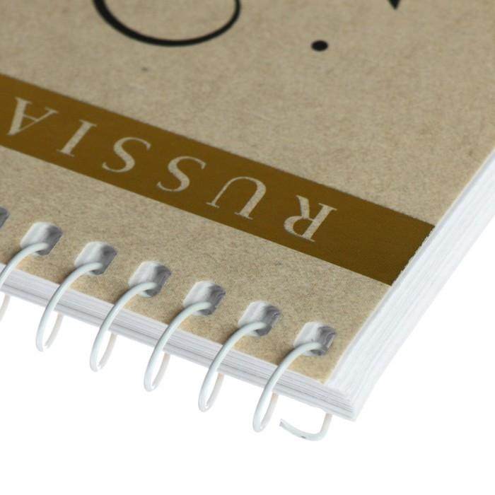 Альбом для рисования А4, 40 листов на гребне «Народные промыслы», обложка мелованный картон, конгрев фольгой, МИКС