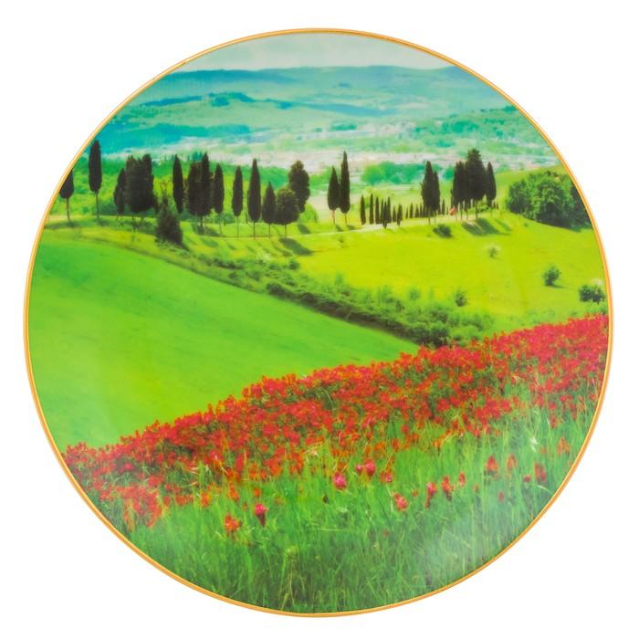 Тарелка декоративная «Зелёный луг и маковое поле» круг, крючок, подставка, d=20 см