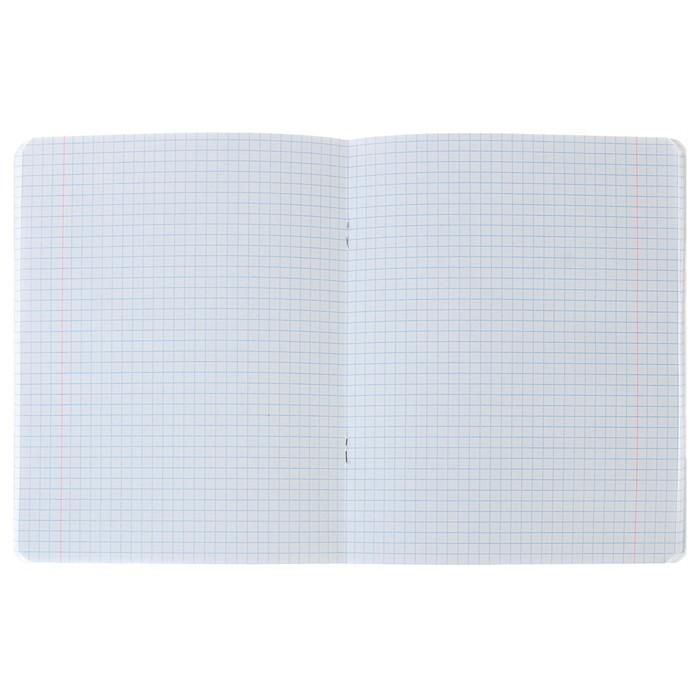 Тетрадь 48 листов клетка «Куколки-путешественницы», обложка мелованный картон, выборочный лак, фольгирование, блок 70 г/м?, МИКС
